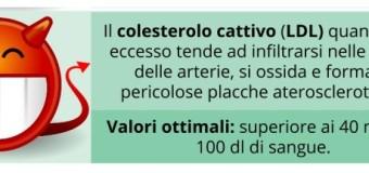 LDL (colesterolo cattivo): alto, basso e rischi