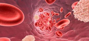 Colesterolo totale alto, basso ed interpretazione