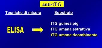 Anticorpi anti-transglutaminasi alti, bassi e valori normali